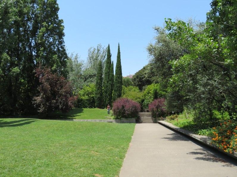 CBM Garden. 11