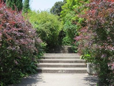 CBM Garden. 13