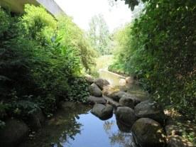 CBM Garden. 9